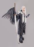 Fantasy woman warrior Royalty Free Stock Photo