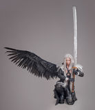 Fantasy woman warrior Stock Images