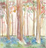 Fantasy woods. Watercolour painting of colourful woods Stock Photo