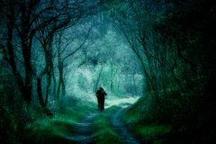 Fantasy woods, people silhouettes on a forest path. Silhouettes walking on a forest path, dark fantasy landscape, mystic wallpaper, book cover Royalty Free Stock Photos