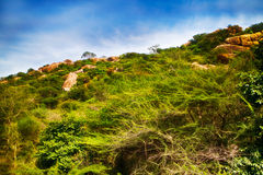 Fantasy world. Fabulous unusual mountain landscape Royalty Free Stock Photography