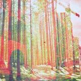 Fantazi ekologii abstrakta tło Miastowy krajobraz Mieszający z Naturalnym na Papierowej teksturze Obrazy Stock