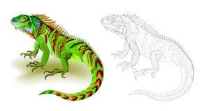 Fantazi ilustracja śliczna zielonej jaszczurki iguana Kolorowa i czarny i biały strona dla kolorystyki książki Worksheet dla dzie obraz royalty free