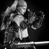 fantazi mody pomysłu wojownika kobieta royalty ilustracja