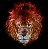 Fantazi sztuka lew Obraz Royalty Free