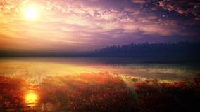 Fantazi Tropikalny środowisko royalty ilustracja