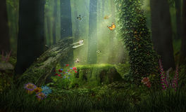 Fantazj światła w lesie Obrazy Stock