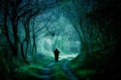 Fantazj drewna, ludzie sylwetek na lasowej ścieżce zdjęcia royalty free