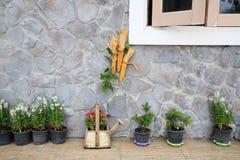 fantazj rośliny dekorować na dom ścianie Obrazy Royalty Free