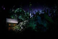 Fantazja dekorująca fotografia Mały piękny dom w trawie z światłem Stary dom w lesie przy nocą z księżyc Selekcyjna ostrość Zdjęcie Royalty Free