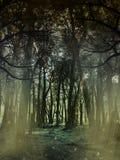 Fantazja krajobraz Zdjęcia Royalty Free