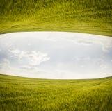 Fantazja równoległych światów pszeniczny pole Obraz Royalty Free