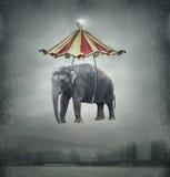 Fantazja słoń ilustracja wektor