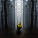 Fantazy landskap med den dimmiga fågeln Fotografering för Bildbyråer