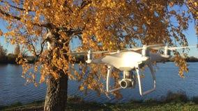 Fantom 4 som för demonstrationsflygsurr DJI är pro- i höstskogMoskva, Ryssland stock video