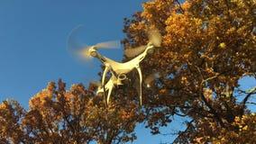 Fantom 4 som för demonstrationsflygsurr DJI är pro- i höstskogMoskva, Ryssland lager videofilmer