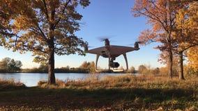Fantom 4 som för demonstrationsflygsurr DJI är pro- i höstskogMoskva, Ryssland arkivfilmer