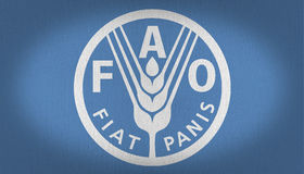 FAO flaga Zdjęcie Stock