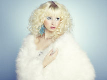 Façonnez la verticale d'une jeune belle femme blonde. Type de l'hiver Images libres de droits