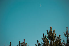 Far away from the city. Beautiful blue sky, you can see the moon Royalty Free Stock Image