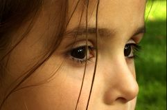 Far away eyes Stock Image