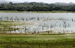 Far infuriare il lago, Panama Fotografie Stock