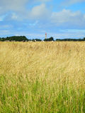 Far lighthouse in golden summer field. Brittany Stock Photos