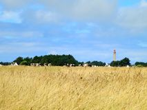 Far lighthouse in golden summer field. Brittany Stock Photo