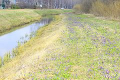 Far from the metropolis river village road forest grass. The fence road car on the roadside nature spring Royalty Free Stock Photos