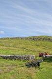 Far Oer Danmark Mykines Island Panorama Stock Photography