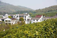 Far see Huanglongxian Village Royalty Free Stock Photos