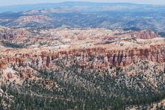 Far View at Bryce Canyon. Vista at Bryce Canyon offers an insight on the altitude of the mesa Royalty Free Stock Photo