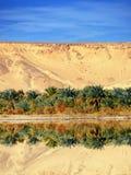 Farafra oasis Stock Image