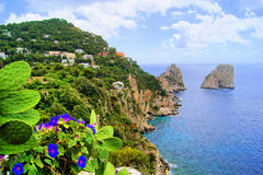 Côte de Capri Images libres de droits