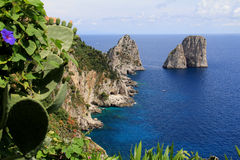 The Faraglioni of Capri Stock Image
