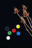 Farb wiadra Farba w bankach, na czarnym tle Przygotowanie dla malować jesień liście na czarnym tle Viburnum gałąź Obrazy Royalty Free