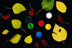 Farb wiadra Farba w bankach, na czarnym tle Przygotowanie dla malować jesień liście na czarnym tle Viburnum gałąź Obraz Royalty Free