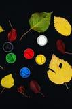 Farb wiadra Farba w bankach, na czarnym tle Przygotowanie dla malować jesień liście na czarnym tle Viburnum gałąź Fotografia Royalty Free