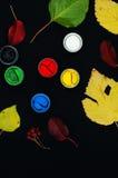 Farb wiadra Farba w bankach, na czarnym tle Przygotowanie dla malować jesień liście na czarnym tle Viburnum gałąź Obrazy Stock
