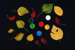 Farb wiadra Farba w bankach, na czarnym tle Przygotowanie dla malować jesień liście na czarnym tle Viburnum gałąź Zdjęcia Royalty Free