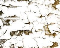 Farba, fotografia, tło szary, blaknący, stary, tekstura, pęknięcia faktura Zdjęcie Stock