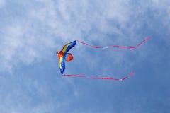 Farbdrachen auf blauem Himmel Lizenzfreie Stockfotos