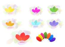 Farbe der Woche gebildet durch die Blätter getrennt auf Weiß stockfotos
