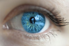 Farbe des blauen Auges der Frauen Lizenzfreie Stockfotografie