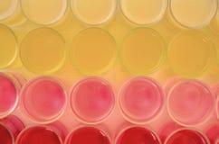 Farbe des Getränks stockbild
