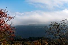 Farbe des Herbstes Lizenzfreie Stockbilder