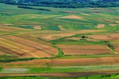 Farbe des reichen Ackerlandhintergrundes Lizenzfreie Stockfotos