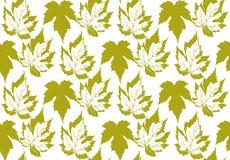 Farbe-pattenr mit Blättern Lizenzfreies Stockfoto