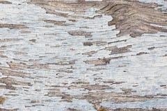 Farbe-Schalenholzbeschaffenheit Lizenzfreie Stockfotografie