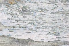 Farbe-Schalenholzbeschaffenheit Stockbild